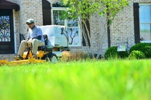 Lawn Care Collections