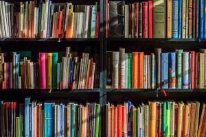 Library debt